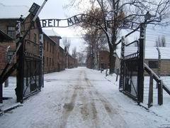 Birkenau-Auschwitz Tour