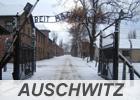 auschwitz-Tour-Birkenau-Auschwitz-tour